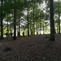 Les géocarnutes sur la colline