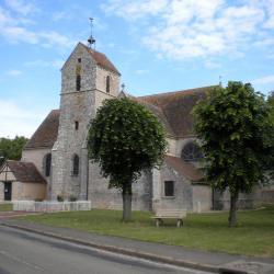 Eglise de Beauvilliers (28)